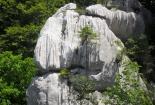 bijele-stijene-0001 (22)