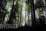medvednica-01 (57)