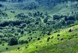 Radlovac, Srednji Velebit