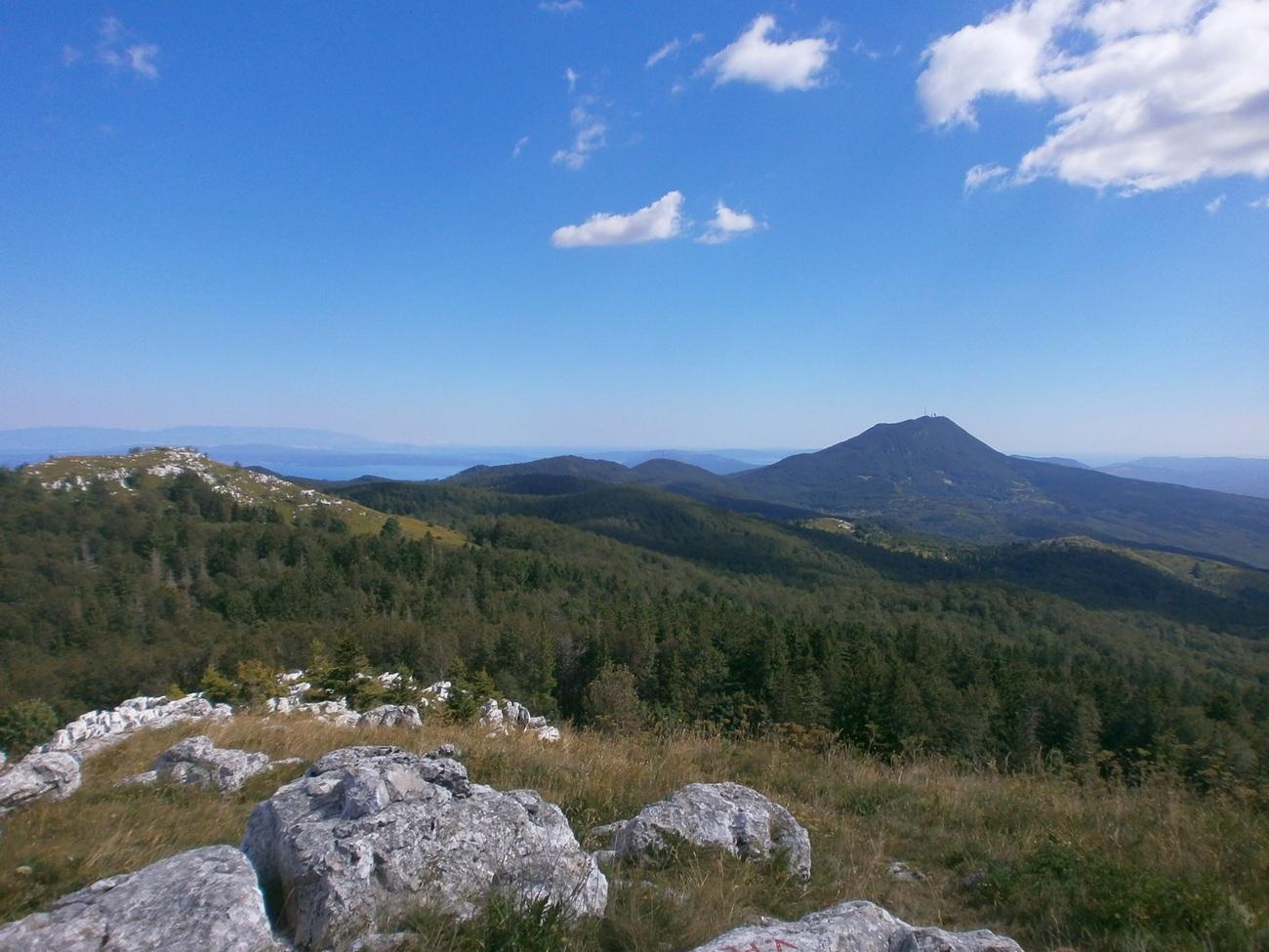 Brdsko-planinsko područje Ćićarije