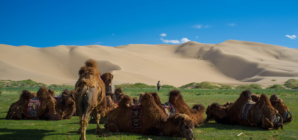 Najveće pustinje na zemaljskoj kugli