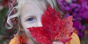 Kanadski javorov sirup