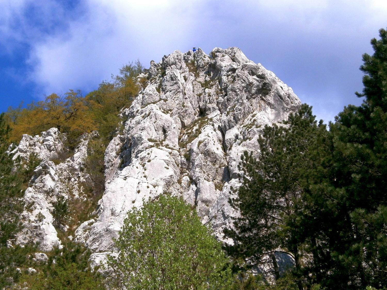 Brajkov vrh
