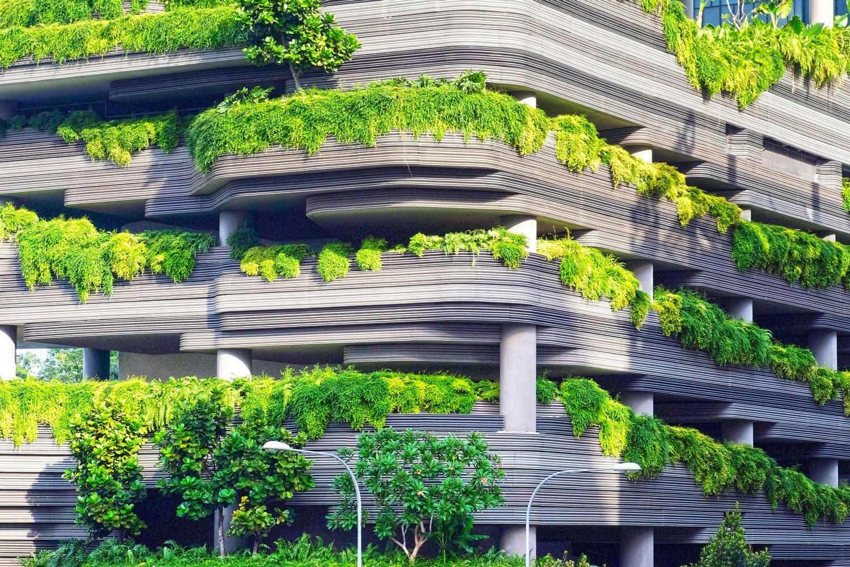 Vertikalna šuma
