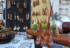 Mosca Bonsai