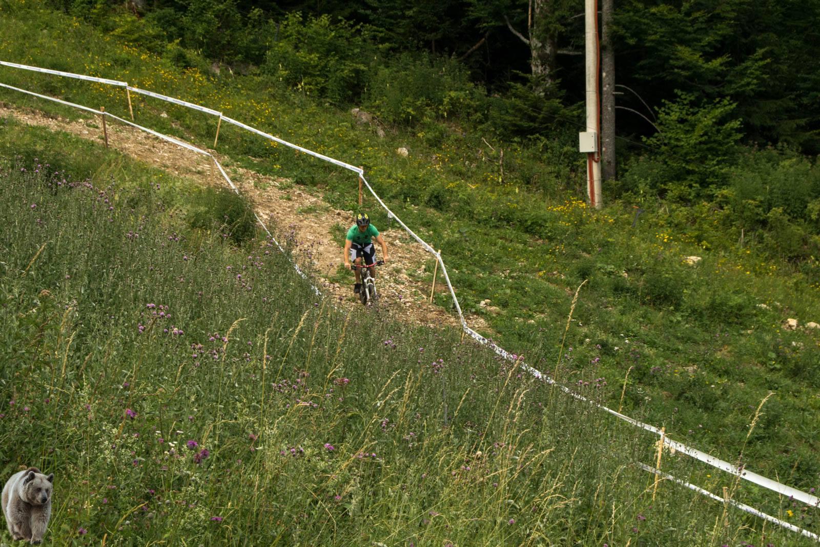 Bike Park Tršće