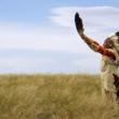 Etički kodeks sjevernoameričkih Indijanaca
