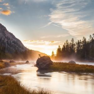 Yellowstone – najstariji Nacionalni park na svijetu