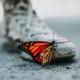 Leptiri plešu svoj zadnji ples