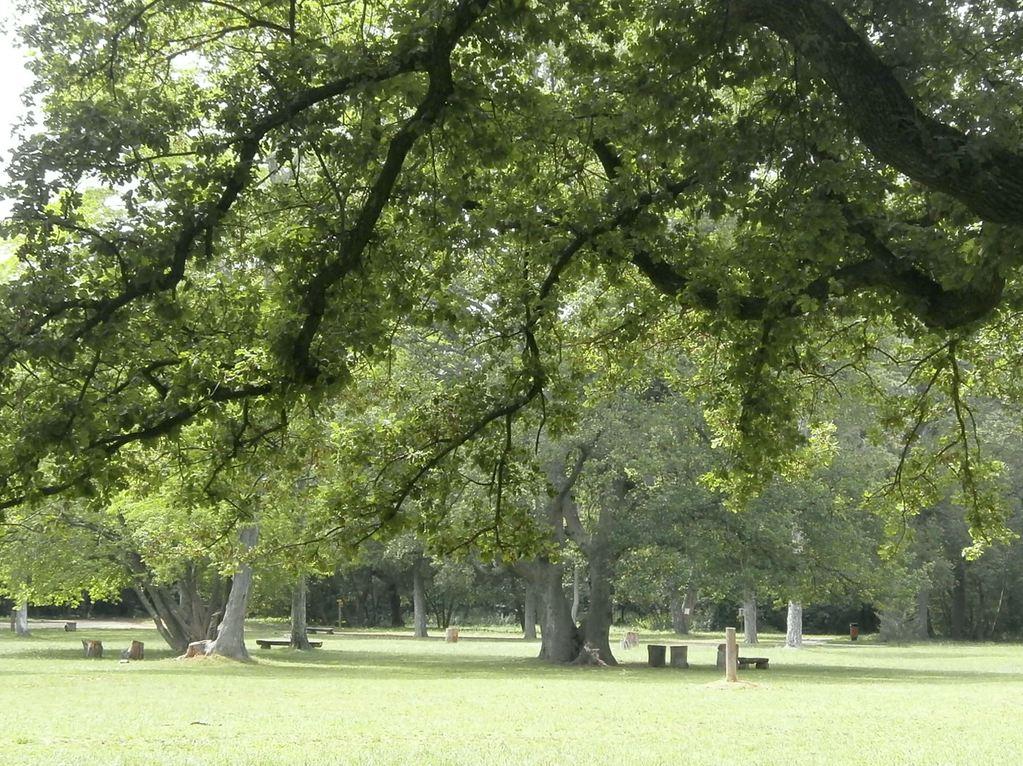 park šijana