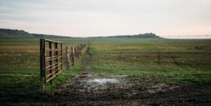 Najveće farme na svijetu
