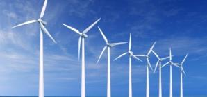 Zaštita prirode, lokalno i globalno zvoni na uzbunu!