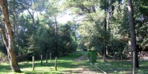 Osjetilno-didaktična šetnica Gradina na Gornjem Kamenjaku