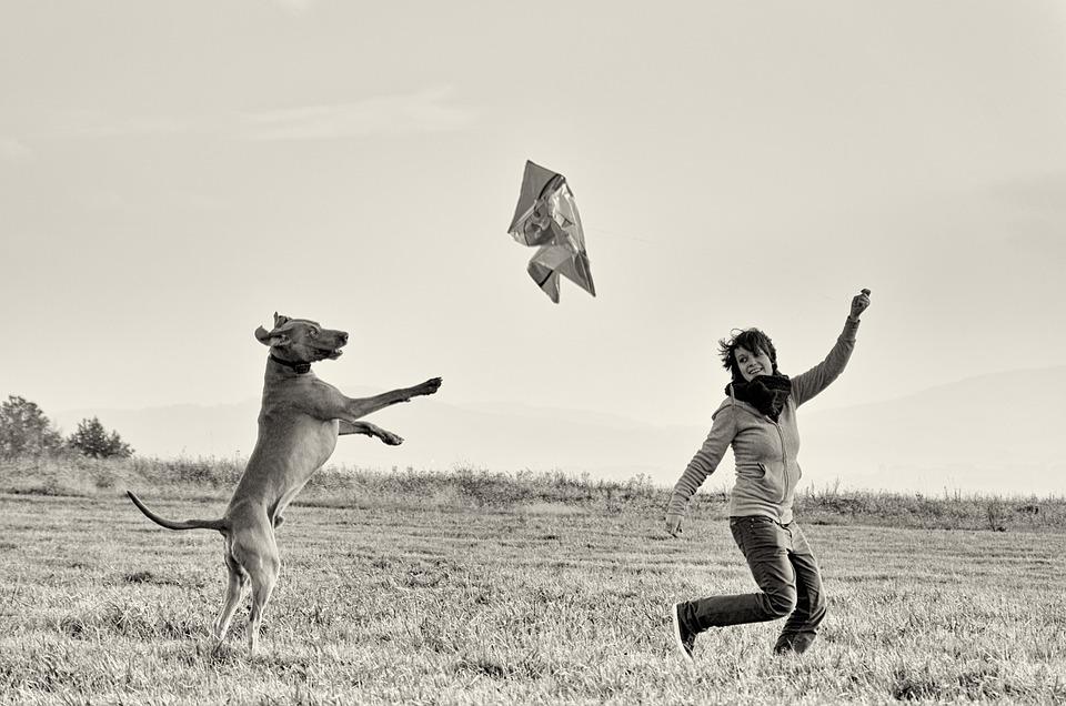 psi i ljudi