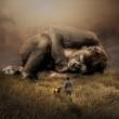 Kako i koliko se spava u svijetu?