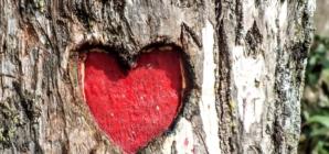 Misliti srcem